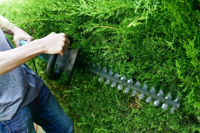 elektrische Gartensäge