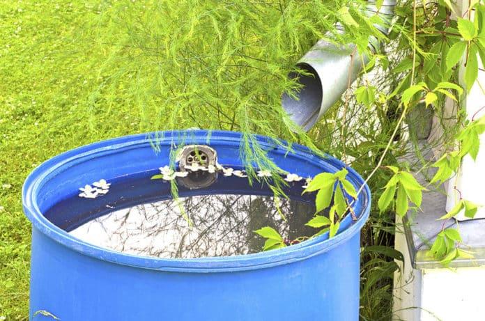 Regentonne mit Regenwasser befüllt
